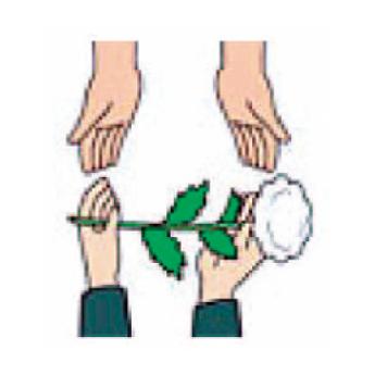 祭壇の手前で、茎が左、花が右側にくるように、両手で受け取ります。