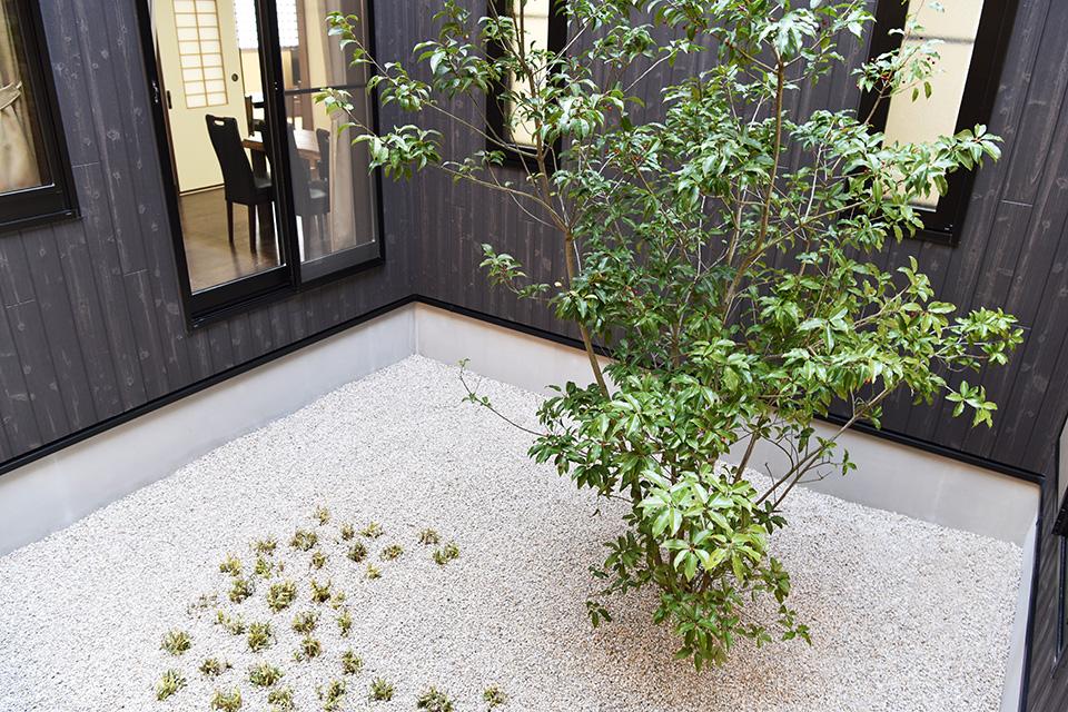 中庭:中庭を囲むようにお部屋があるため、どの部屋からも落ち着いた雰囲気が味わえます。